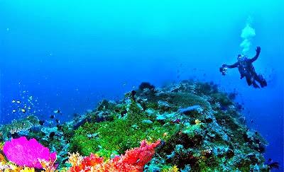 wisata bahari indonesia, snorkling