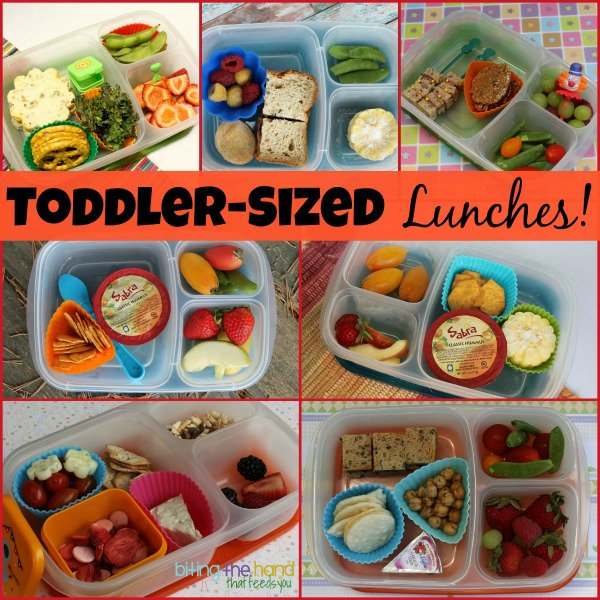 "Lunchbox Ideas For Toddlers And Preschoolers. by Holley Grainger, MS, RD. My girls, Ellie and Frances, tend to be ""choosy"" when it comes to what they eat. But I've found that lunch is definitely when they eat the most food, as well as the best variety. Maybe it's from peer pressure–or maybe they're just hungrier midday."