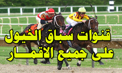 dupai racing, horse racing