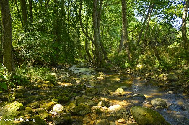 Gradeska Reka, Mariovo