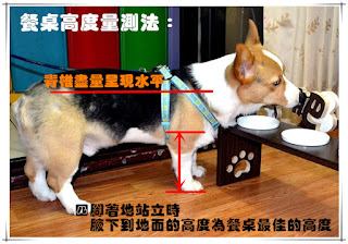 altura do pote dos cães