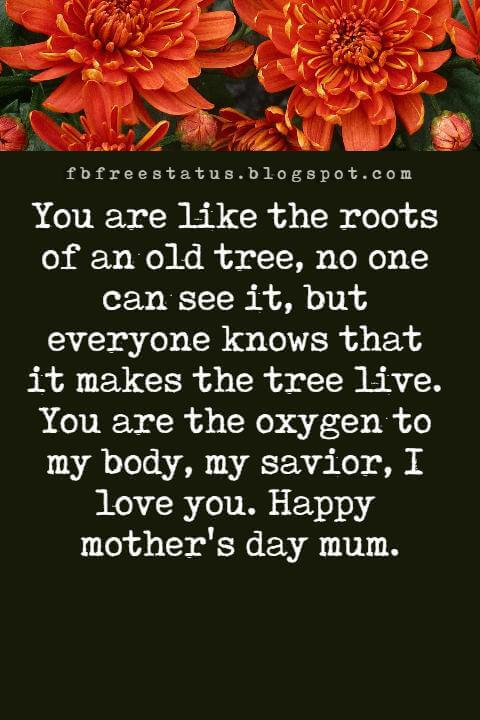 messages for mothers day, You are like the roots of an old tree, no one can see it, but everyone knows that it makes the tree live. You are the oxygen to my body, my savior, I love you. Happy mother's day mum.