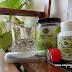 Silera Chia Seed Diet Sihat,Enak dan Berkhasiat
