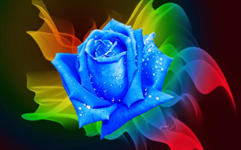 Violetas La Leyenda De La Rosa Azul
