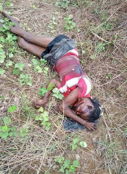 Graphic Photos: Fulani herdsmen reportedly invade Ebonyi Community, kill scores including a child