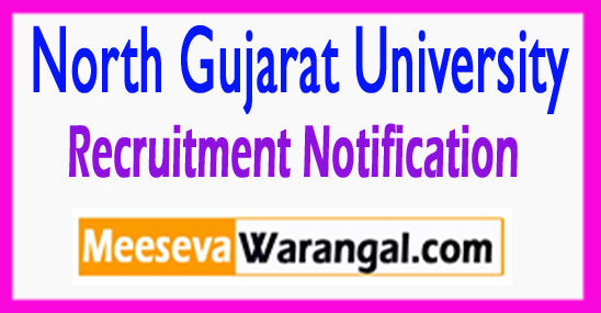 NGU North Gujarat University Recruitment Notification 2017  Last Date 11-08-2017
