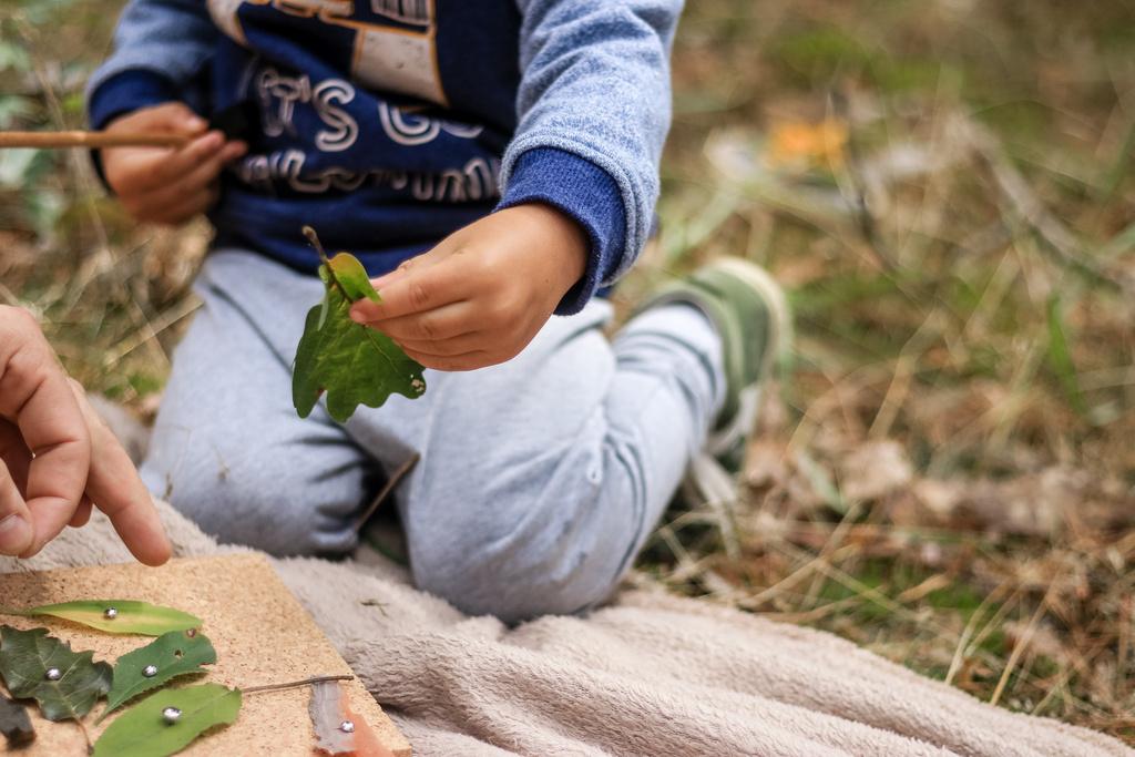 Wald Kinder Natur DIY