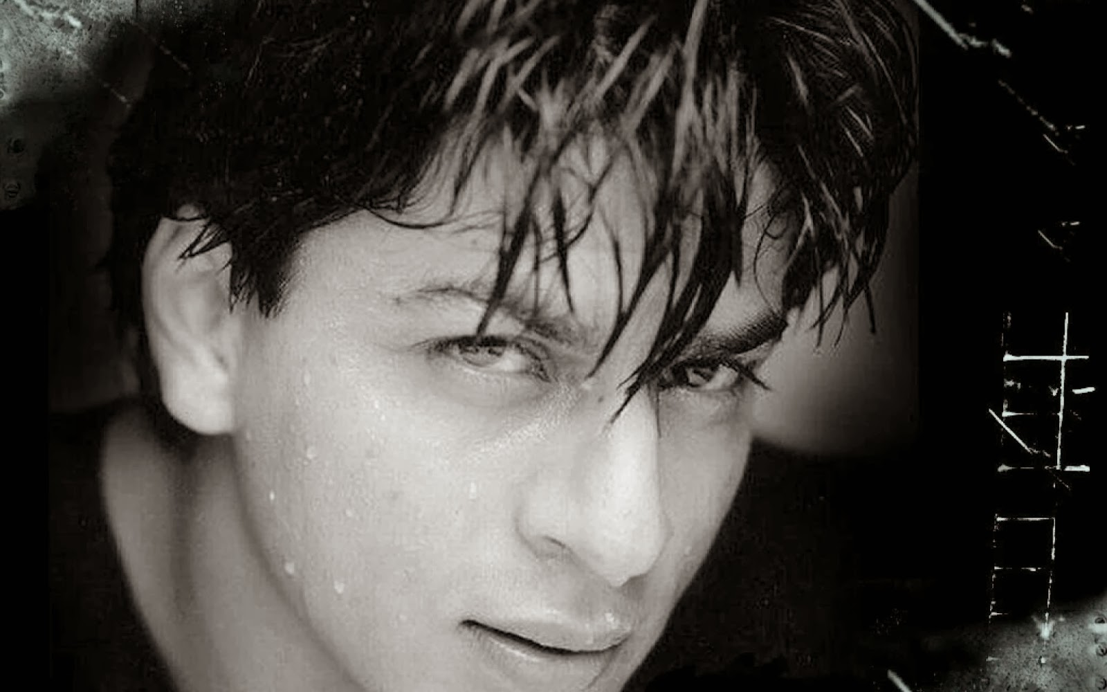 Hd wallpapers shah rukh khan hd wallpaper - Shahrukh khan cool wallpaper ...