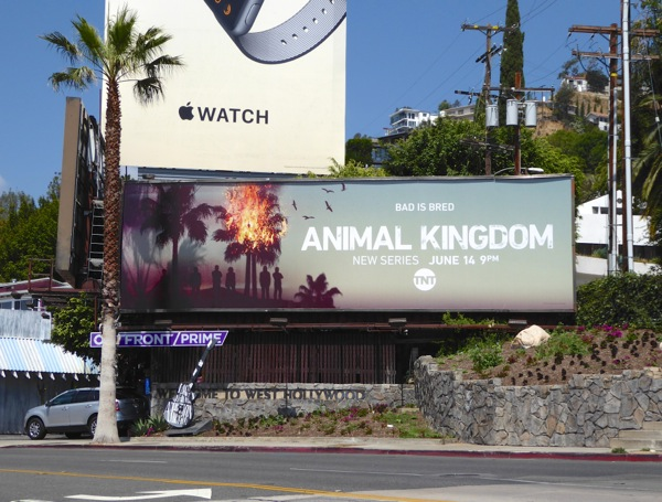 Animal Kingdom series premiere billboard