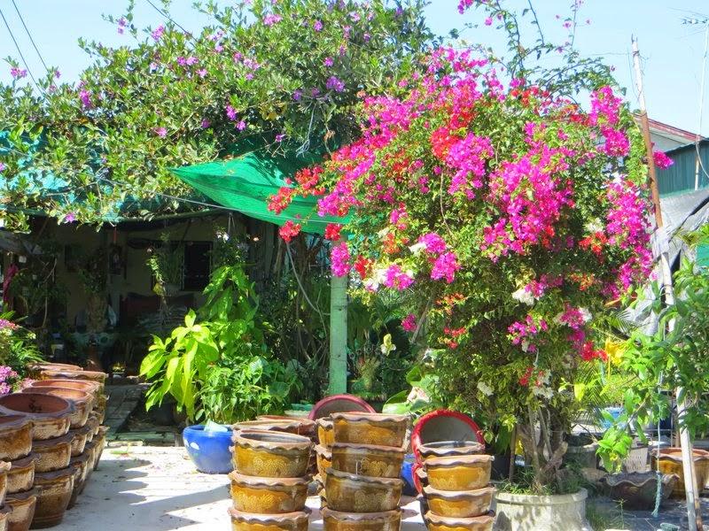 Цветы у уличного магазина