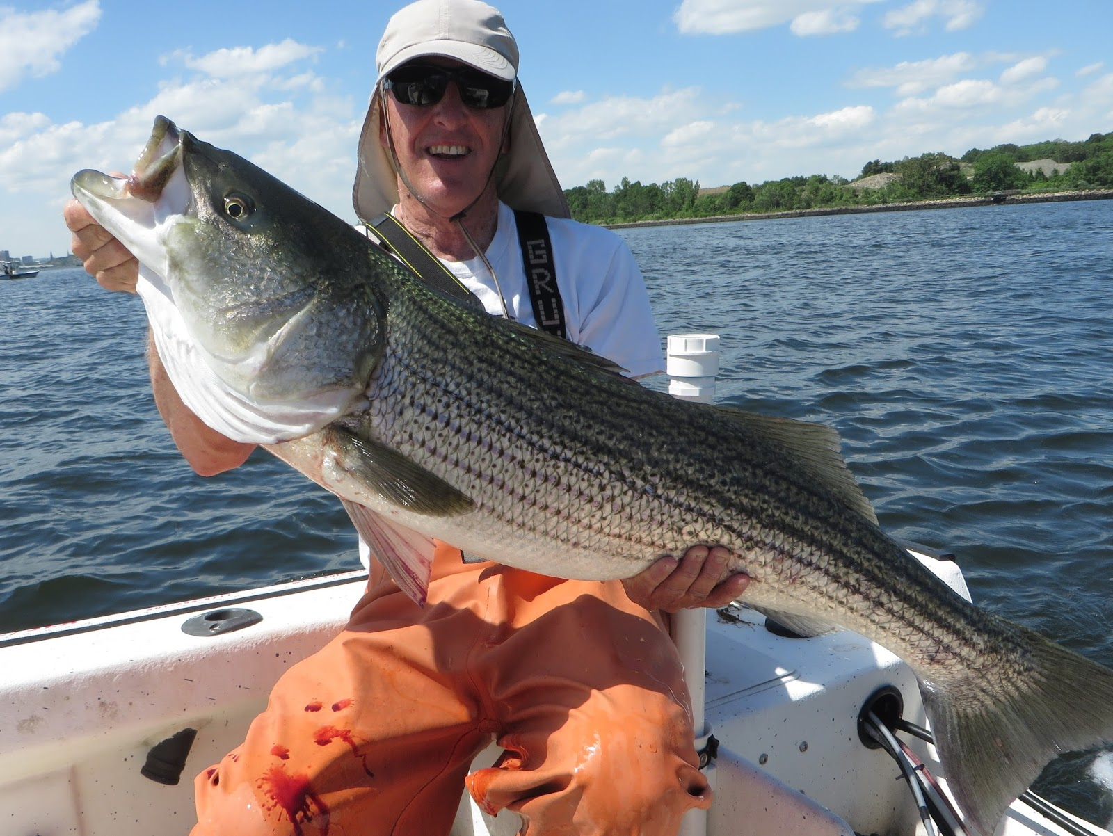 Rhode island striped bass one of the best big fish days for Best striper fishing spot in ri