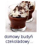 http://www.mniam-mniam.com.pl/2018/03/domowy-budyn-czekoladowy.html