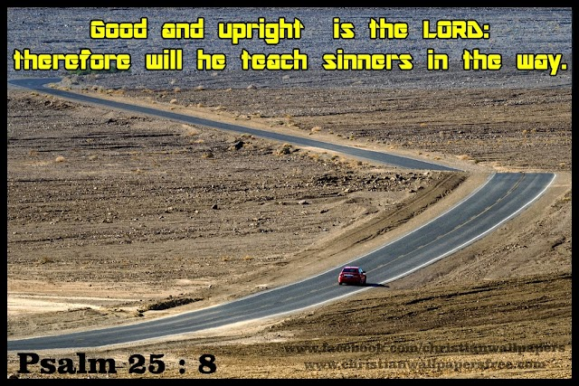 Good and upright is the lord