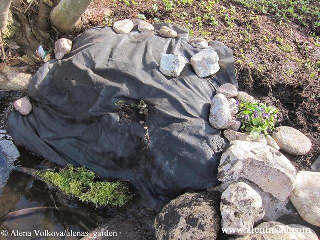 фиалка, ручей, геотекстиль, камни, сныть, ива, спанбонд, лутрасил, агроволокно, агротекс, нетканый материал, против сорняков, использование в огороде