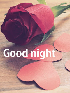 good night rose flowers images