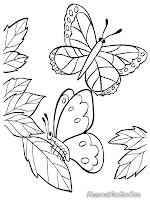 Mewarnai Gambar Kupu Kupu Dan Bunga : mewarnai, gambar, bunga, Mewarnai, Gambar, Bunga, Kupu2