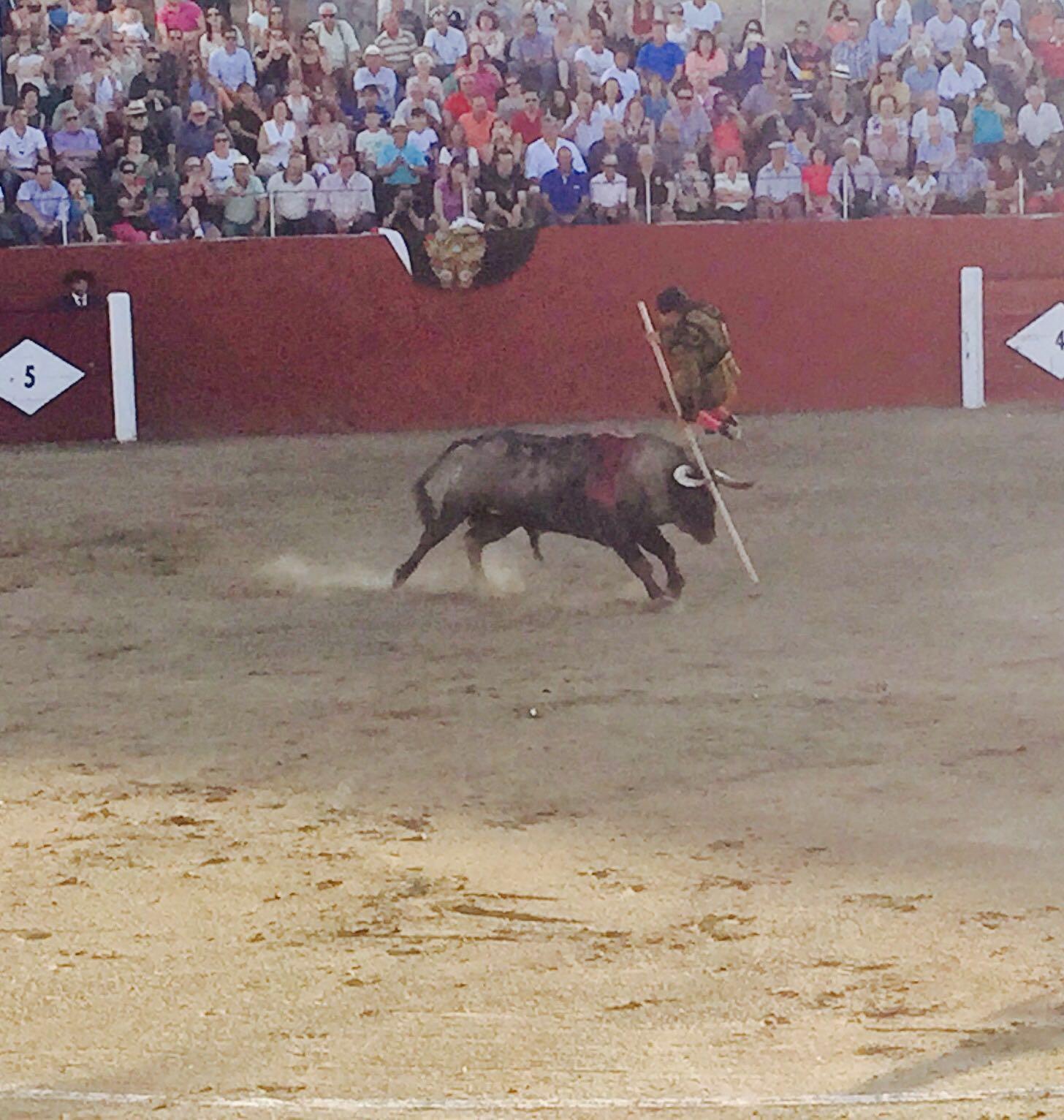 publicsex corridas de aficionados