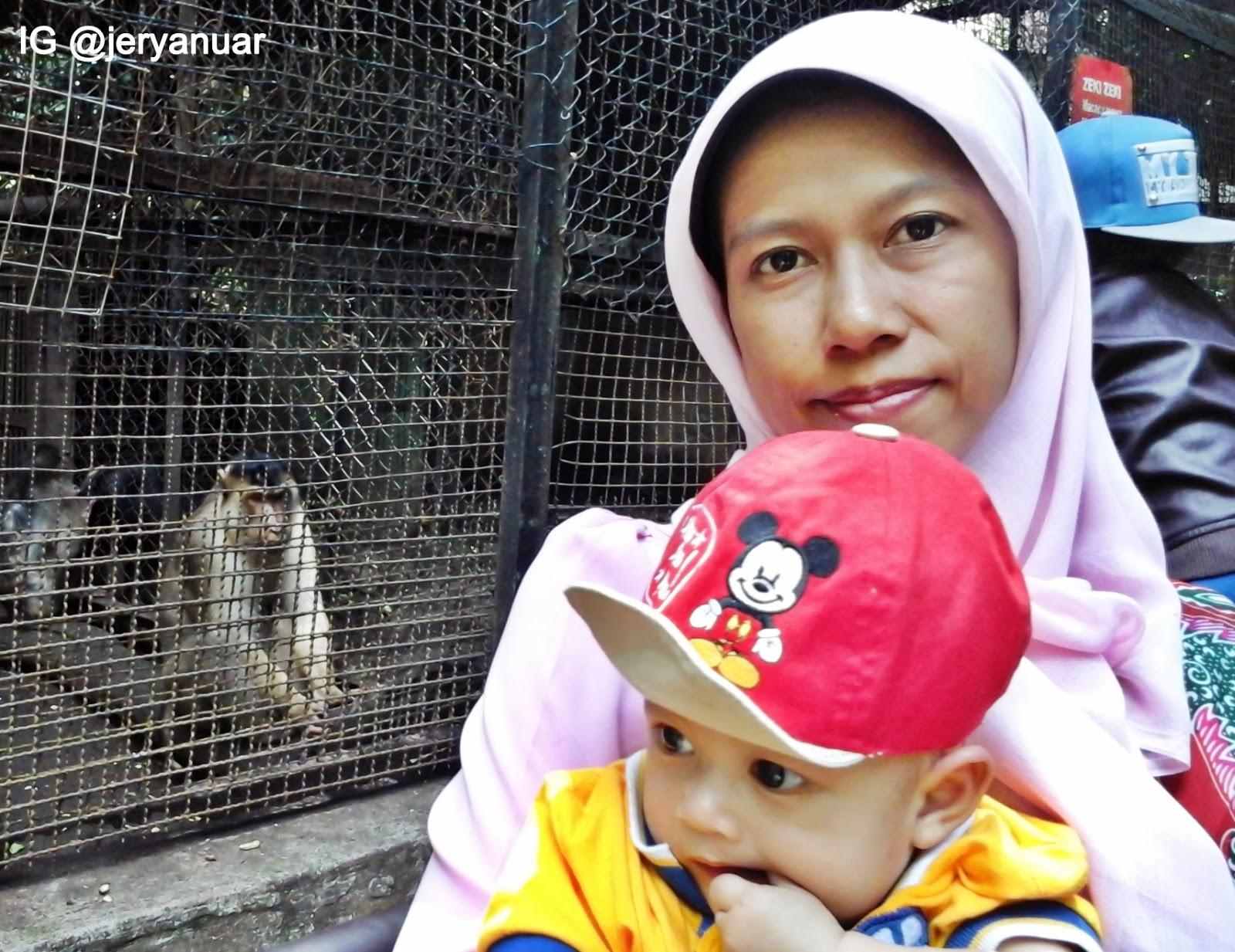 Rekreasi ke Kebun Binatang Bandung