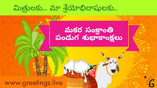 Best Sankranti Festival 2018 Wishes in Telugu Language Ultra HD Image collections
