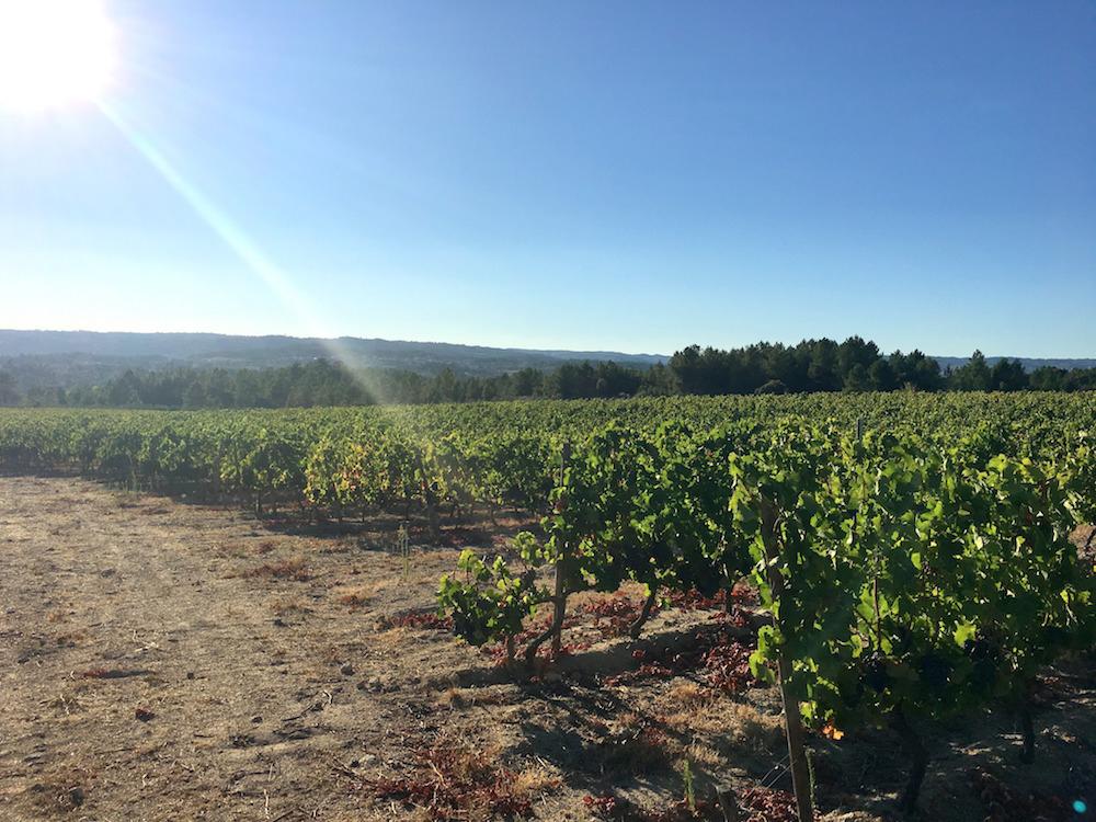 summer portugal travel blog