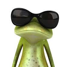 Katak adalah satu anggota dari classic Amphibia