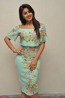 Nikki Galrani in Cute Dress Dress At Marakathamani Success Meet ~  Exclusive 029.JPG