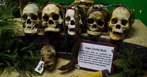 Shrunken Heads at Ripley's Believe it or Not in Wisconsin Dells