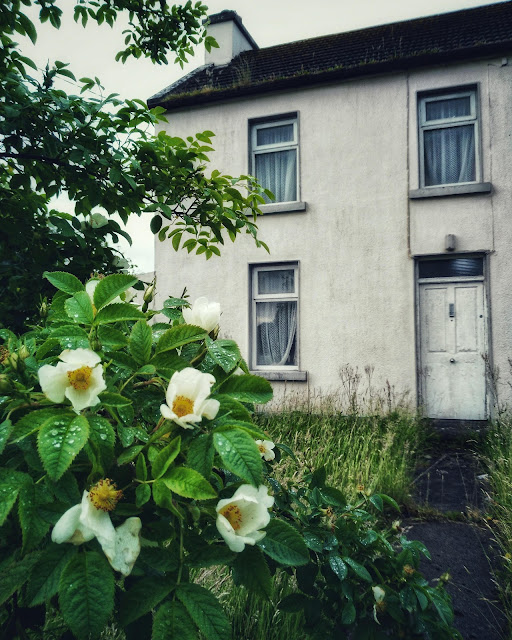 old house, flowers, Moycullen
