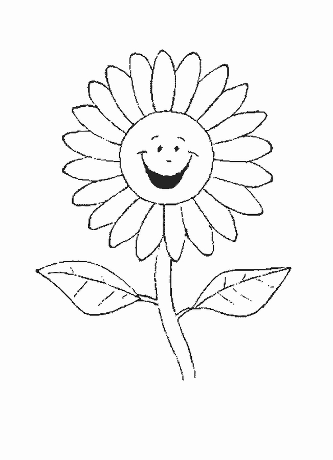sunflower coloring sheet printable free for all kids