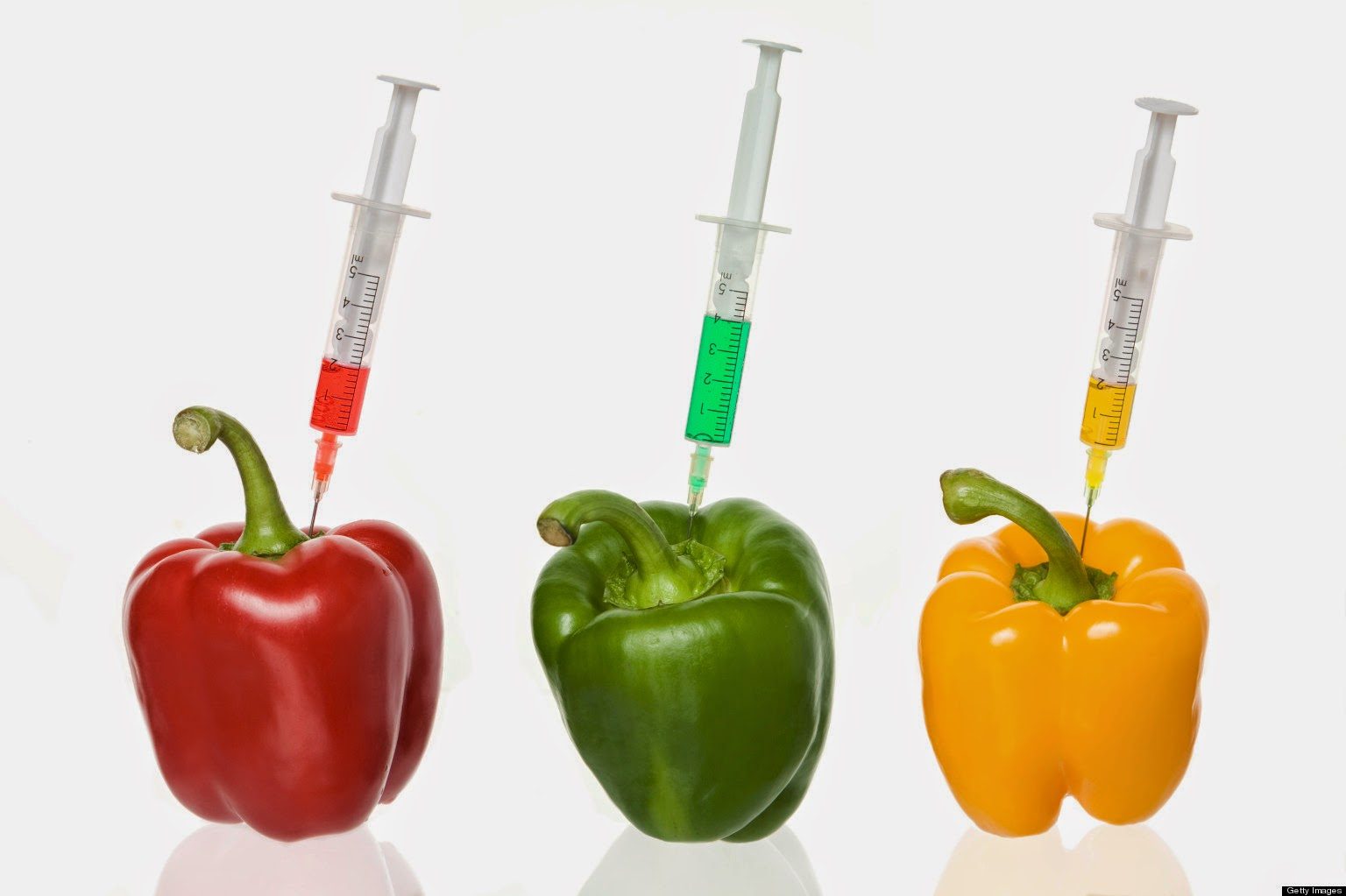 TIPS TO IMPROVE HEALTHY LIFE: Genetically Modified Foods ...