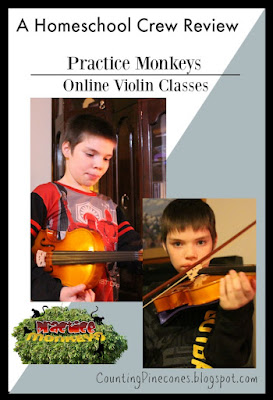 #hsreviews #violin #LiveViolinClasses  #practicemonkeys #onlineviolinlessons #onlinepianolessons