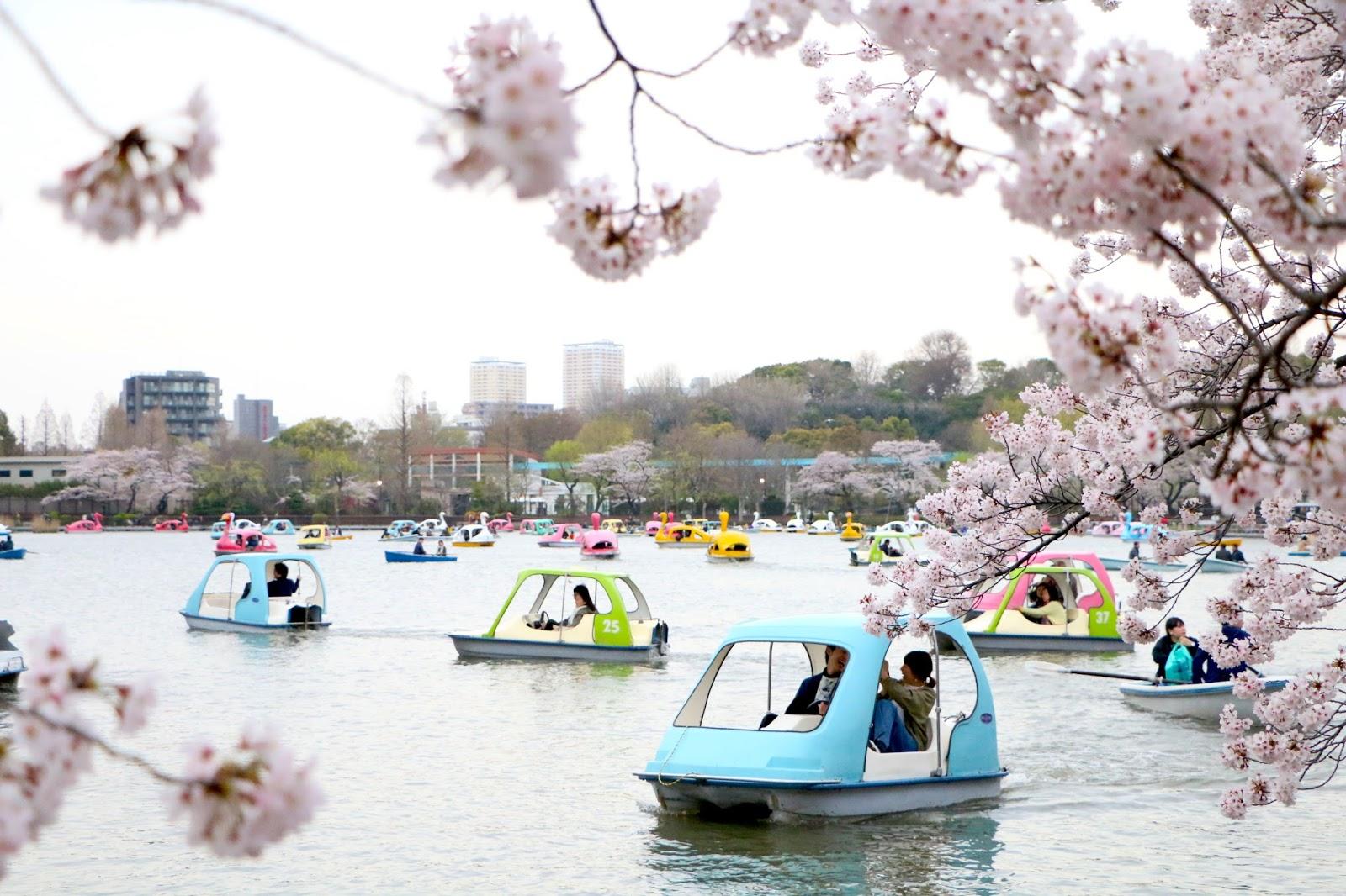 Tokyo city guide : préparer son voyage au japon   slanelle style ...