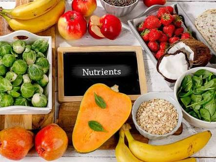 Key Nutrients To Maximize Your Health