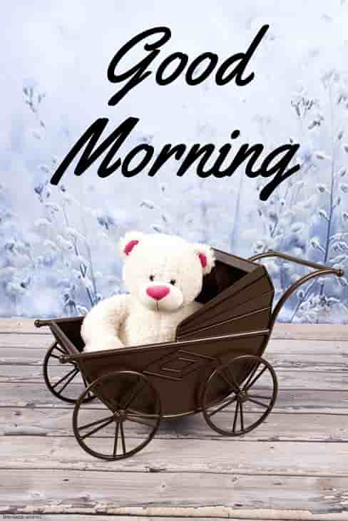 good morning teddy bear hd images