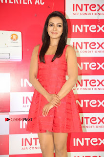 Actress Catherine Tresa Unveils Intex Air Conditioners  0005.jpg