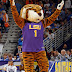 LSU students claim 'violent' tiger mascot 'symbol of white oppression'