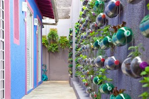 The Garden and the Flower Pots Of Beautiful and Fascinating Items