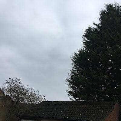 Standard January sky