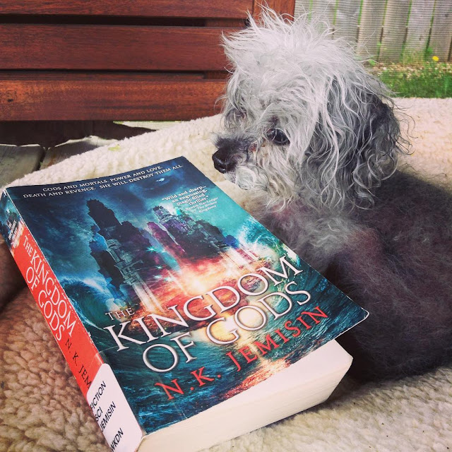 Fuzzy Murchie lies in an outdoor dog bed, a trade paperback copy of The Kingdom of Gods beside him. The book's cover features a towering palace hovering above a dark, swirling sea. A flash of brilliant red seems to keep it afloat.