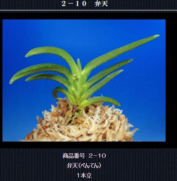 http://www.fuuran.jp/2-10html