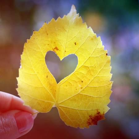 Mencintai Karena Allah