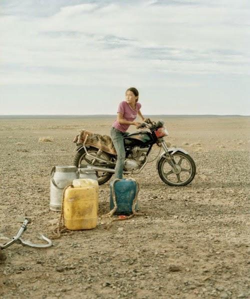 gobi desert nomad book