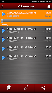 Voice Recorder Files