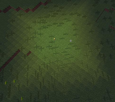 Minecraft Wiz Torches Lighting The Way