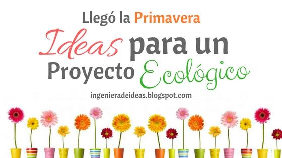 ideas para un proyecto ecológico