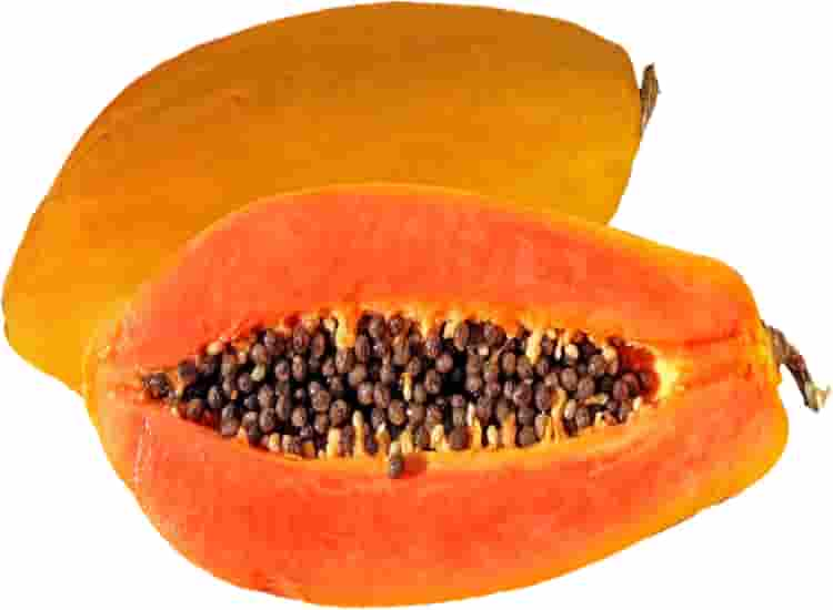 Papayas Uses - A Powerhouse of Digestive Enzyme Nutrition | Papaya Fiber | Health | Hawaii