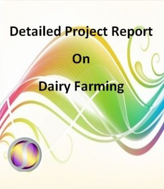 Project Report on Dairy Farming
