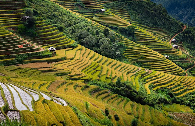 What makes you spend 5 days for a trip to explore Sapa & Mu Cang Chai? 1