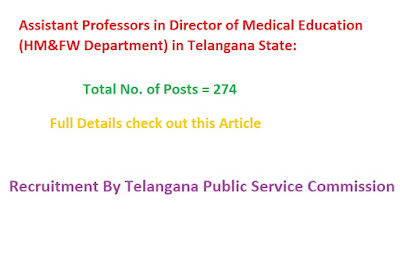 Assistant Professors in Director of Medical Education