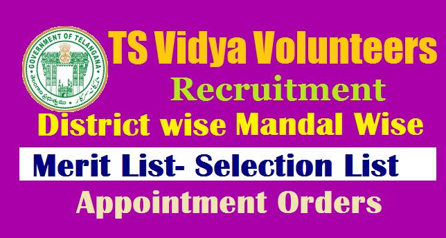 TS Vidya Volunteers (VVs) Merit List /Selection List 2019